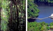 Tourismus in Brasilien